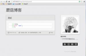 blogmi语法高亮minicms